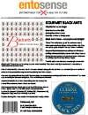 Gourmet Black Ant Information