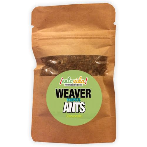 Weaver Ant Sample
