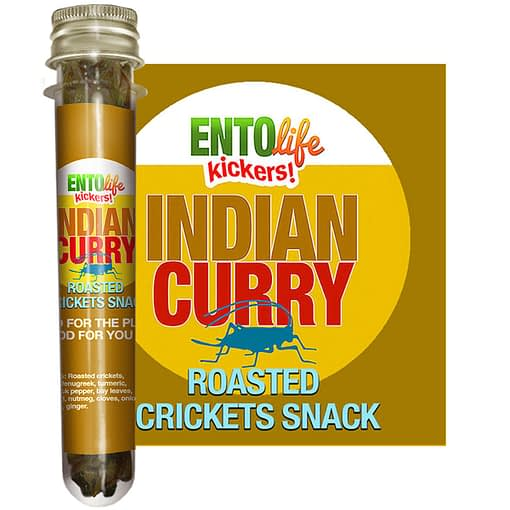 Indian Curry Flavored Crickets