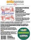 Edible Scorpion Information