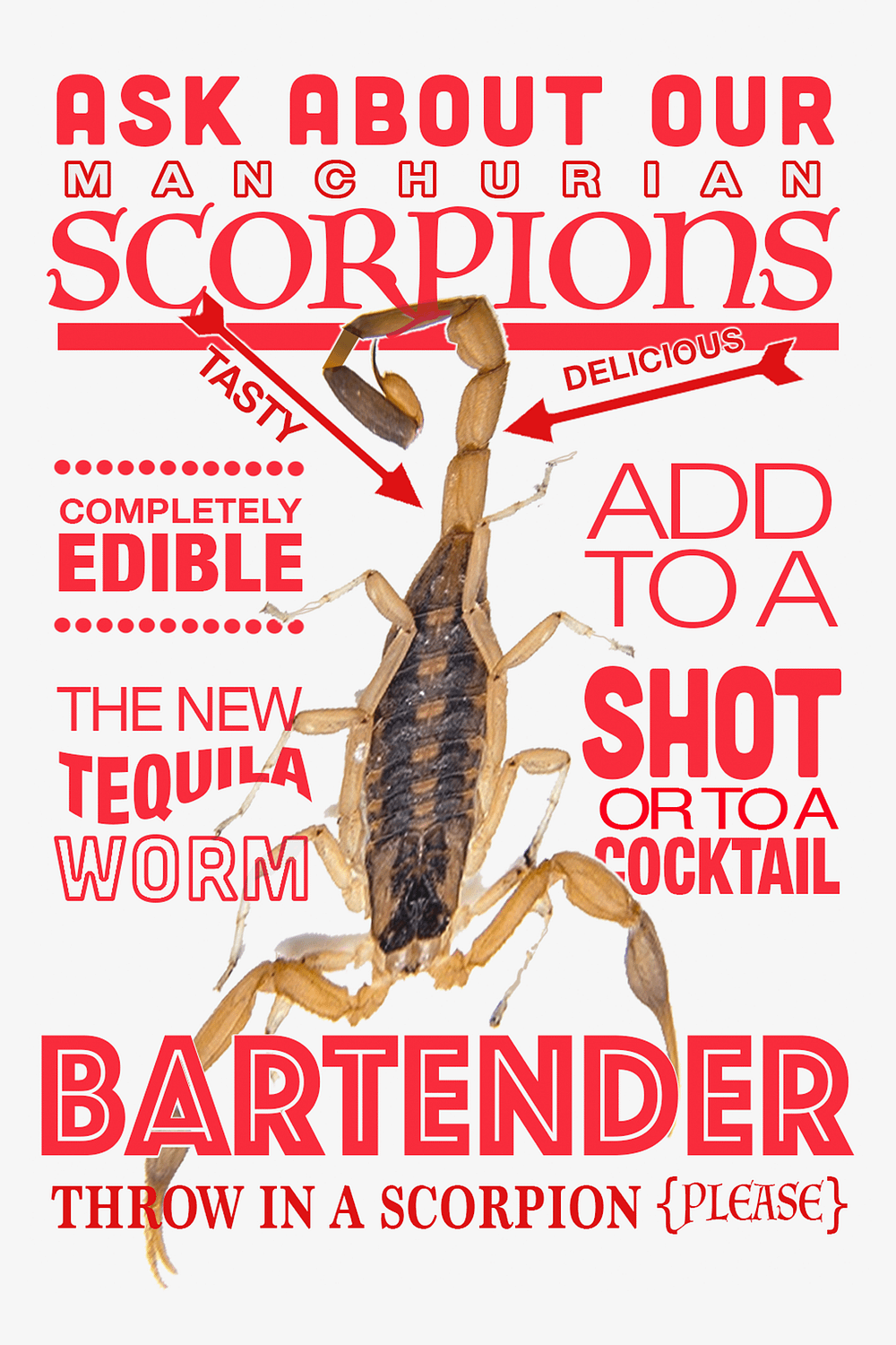 Scorpion You Can Eat