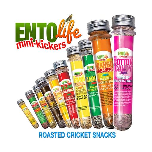 Min-Kickers Flavored Crickets