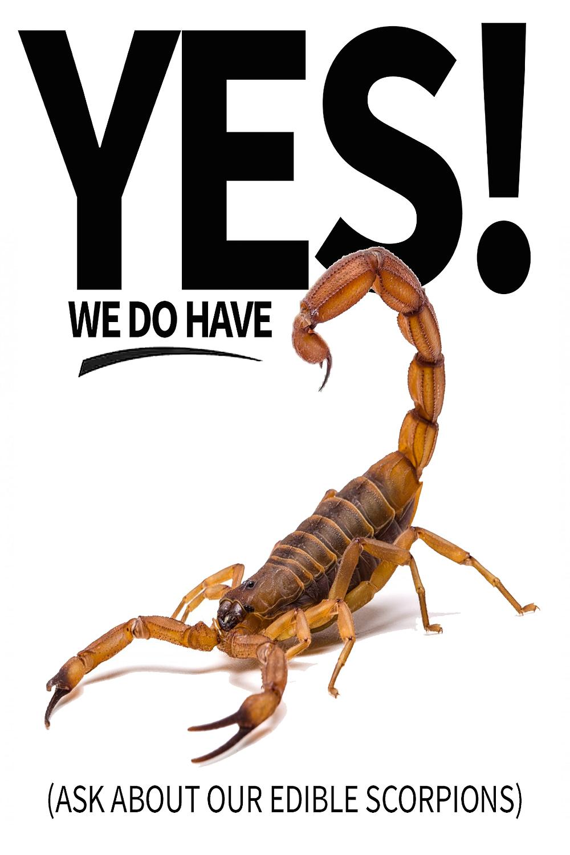 Eat Scorpions