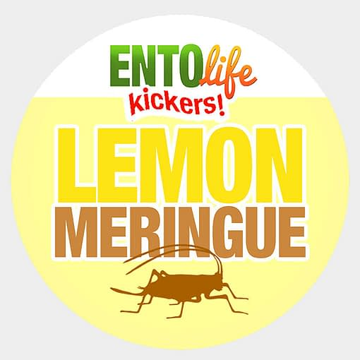 Mini-Kickers | Lemon Meringue Flavored Crickets