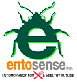 Entosense Logo