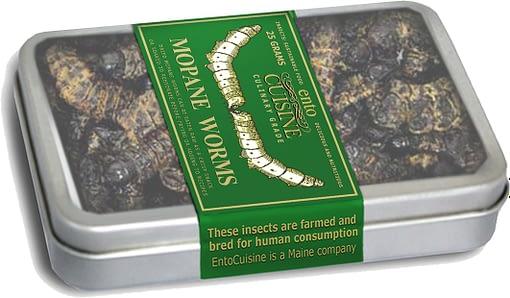 Roasted Mopane Worms