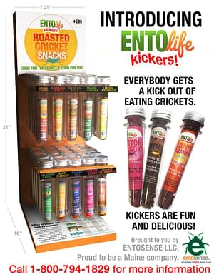 Flavored Crickets