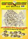 Ant Sesame Brittle
