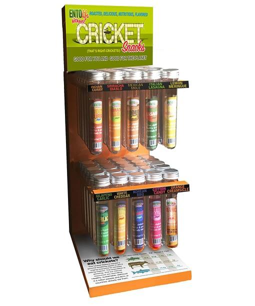 Edible Cricket Display