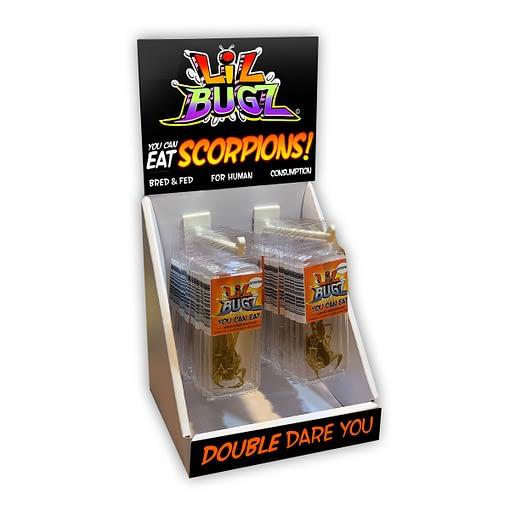 Lil Bugz Edible Scorpion Display