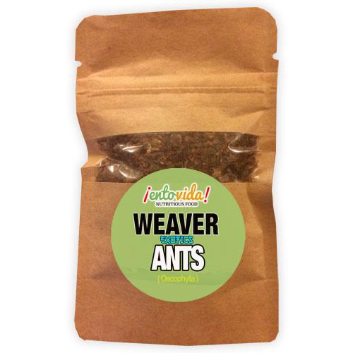 Weaver Ant Sample