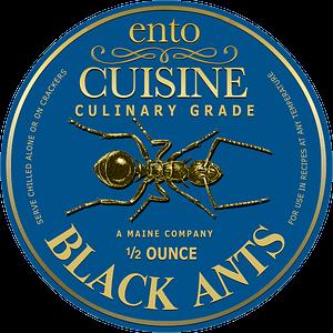 Edible Black Ants