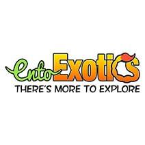 EntoExotics Logo