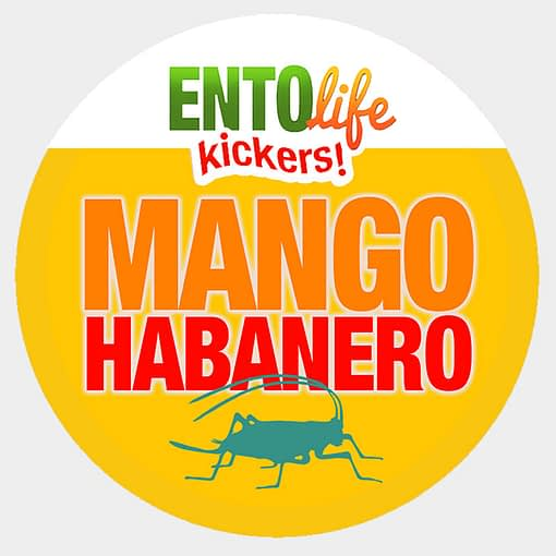Mini-Kickers | Mango Habanero Flavored Crickets