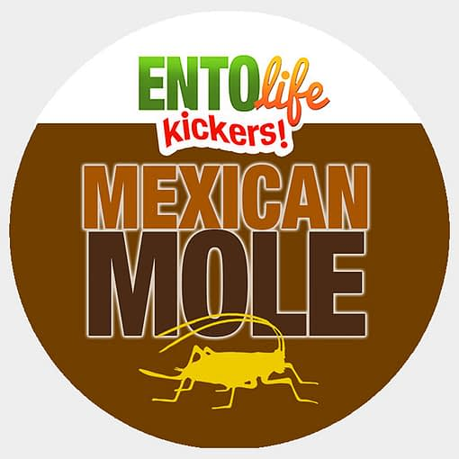 Mini-Kickers | Mexican Mole Flavored Crickets