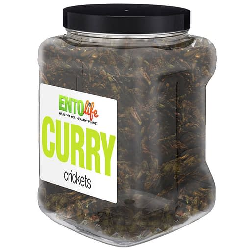 Curry Crickets Bulk