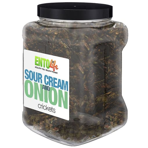 Sour Cream & Onion Crickets Bulk